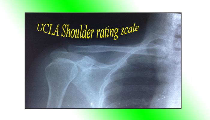 UCLA Shoulder rating scale